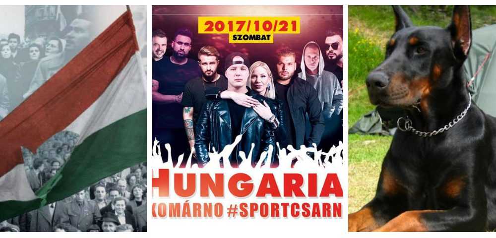 Szia Komárom - '56-os megemlékezések, a Hungarian Stars és kutyaszépségverseny vár ránk a héten