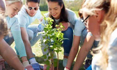 Szia Komárom - Tegyük varázslatosabbá a Dunamentét! Ültess Te is őshonos gyümölcsfát!