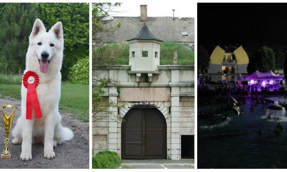 Szia Komárom - Nemzetközi kutyakiállítás, erődtúra és éjszakai fürdőzés is vár ránk a héten